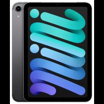 Education iPad mini Wi-Fi + Cellular 256GB - Space Grey
